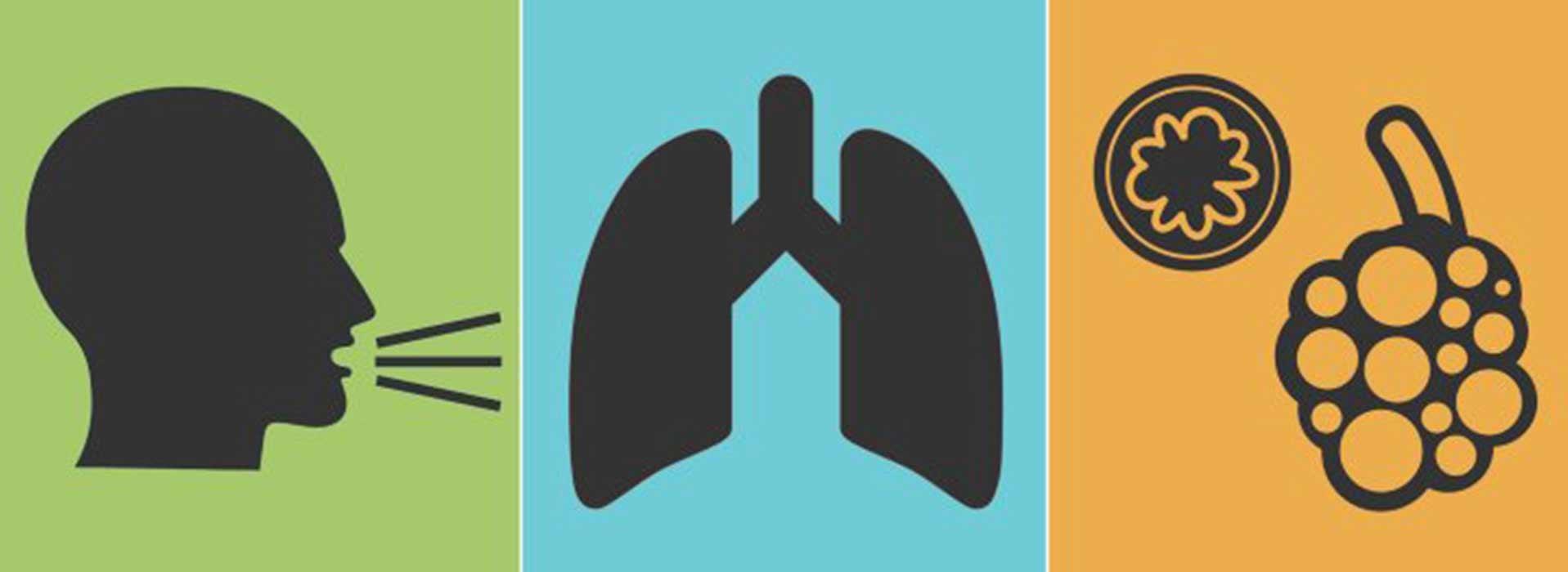 COPD bronchitis longemfyseem